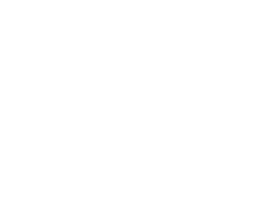 email-icon-white